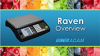 Raven Price Computing Scale Overview